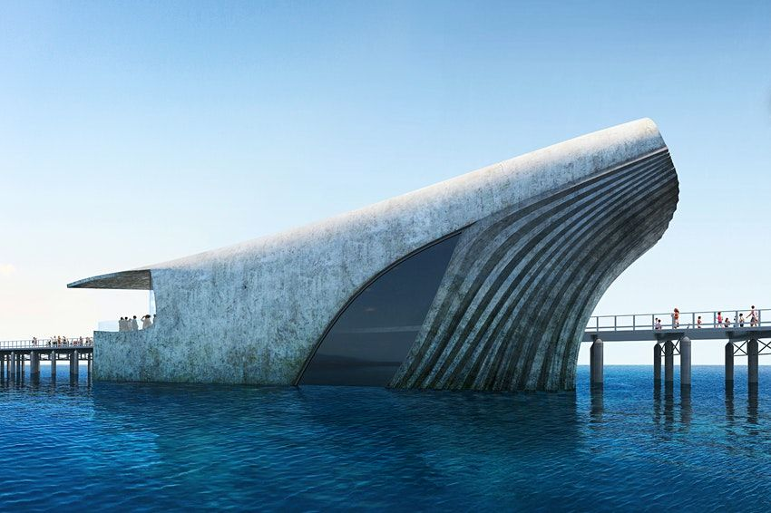 L'osservatorio marino australiano a forma di balena spunterà dall'Oceano