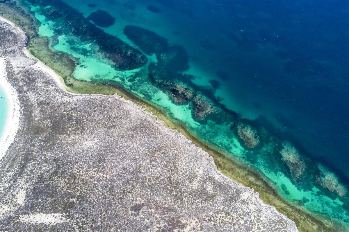 Questo nuovo parco nazionale australiano è un paradiso della biodiversità marina