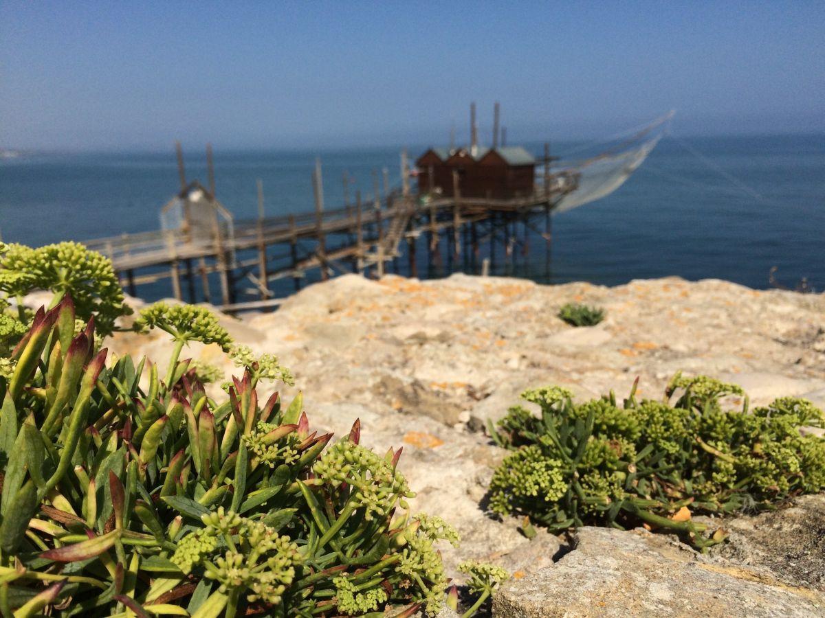 Perché il Molise è il luogo giusto per chi cerca un viaggio lontano nel tempo