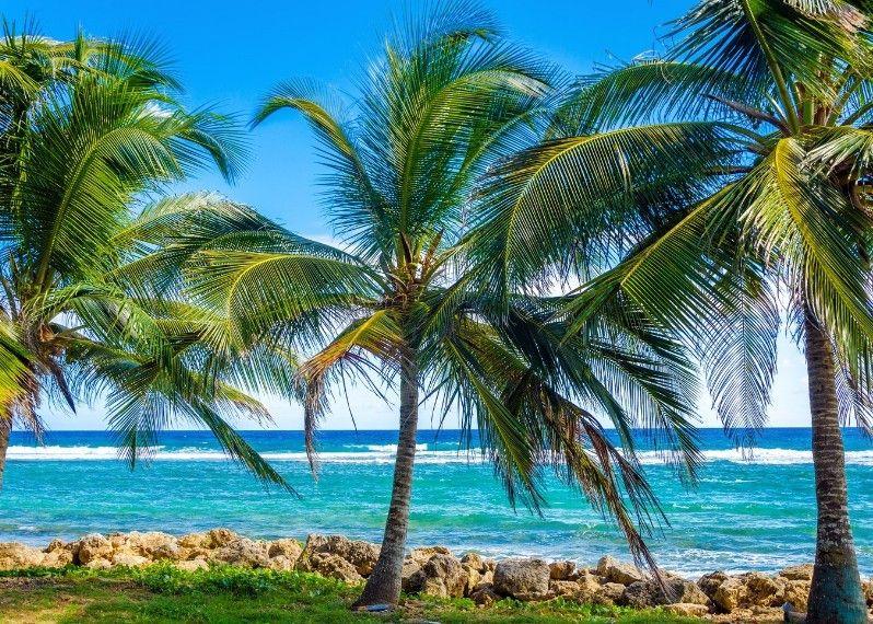 I 10 Paradisi Tropicali Più Incredibili Lonely Planet